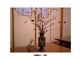 image/kappou-naniwa-2006-05-03T21:34:12-1.jpg