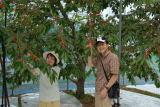 image/kappou-naniwa-2006-06-25T20:12:19-1.jpg